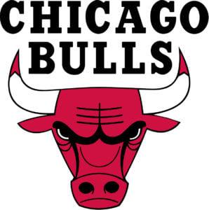 Chicago Bulls team logo in JPG format