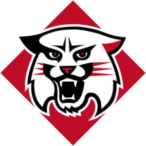 Davidson Wildcats Colors