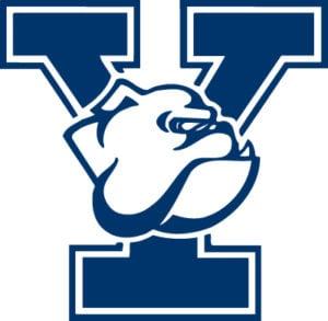Yale Bulldogs Colors