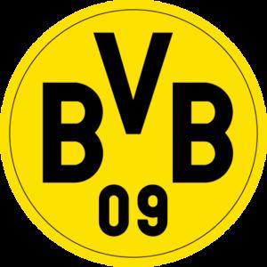 borussia dortmund logo colors