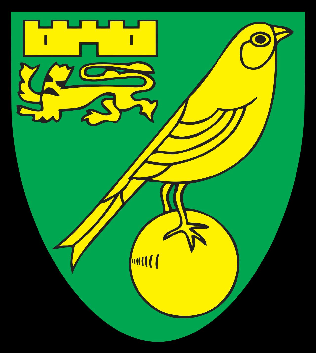 Norwich City Colors