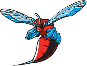 Delaware State Hornets team logo in JPG format