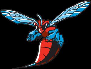 Delaware State Hornets team logo in PNG format